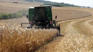 Les Groupements d'Employeurs Agricoles et Ruraux